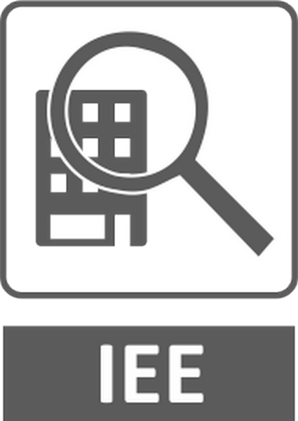 Quien realiza el IEE insignia bt2asociados