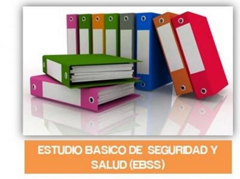 Estudio básico seguridad y salud EBSS
